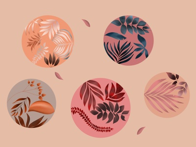 Leaves variety in bubbles fall autumn botanicals nature pink leaves plants botanical art illustration
