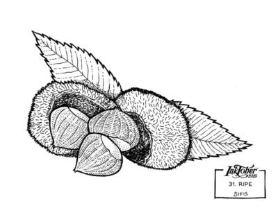 31. Ripe - Marker sketch
