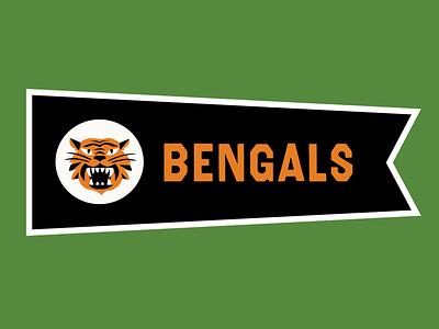Cincinnati Bengals pennant type typography illustration nfl bengals cincinnati