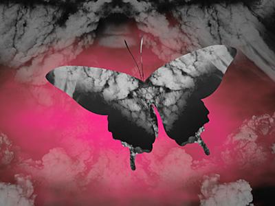 Kaskade Butterfly