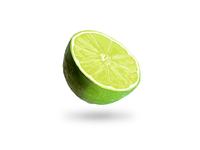 Lime Sketch
