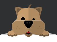 Flat Shnauzer Dog