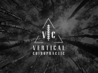 Logo and Brand Identity for Vertical Chiropractic