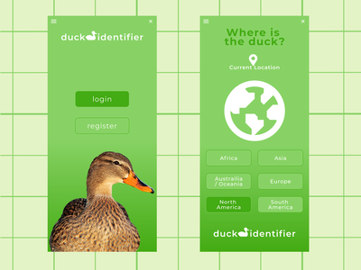 Duck Identifier Design Concept