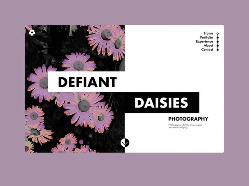 defffiant typography ux vector branding ui logo web beauty website design