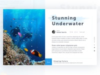 Article Page Concept