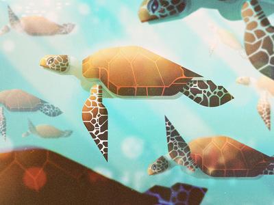 Turtles sea animals turtles digital illustration james gilleard