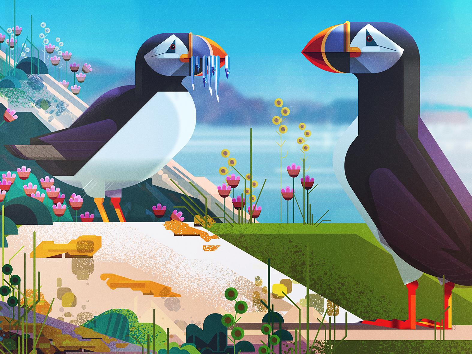Puffin spread detail from Saving Species book endangered species animals illustrator geometric digital vector illustration james gilleard
