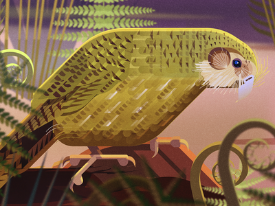 SAVING SPECIES SPREAD birds animals illustrator geometric digital illustration vector james gilleard