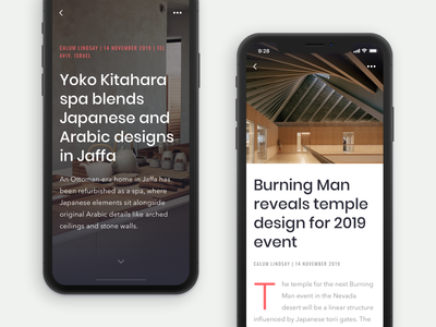 Article screen for Archo App
