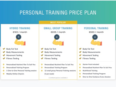 Price plan flyer for a zym flyer price plan price table