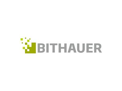 Bithauer Logo vector logo branding branding and identity design