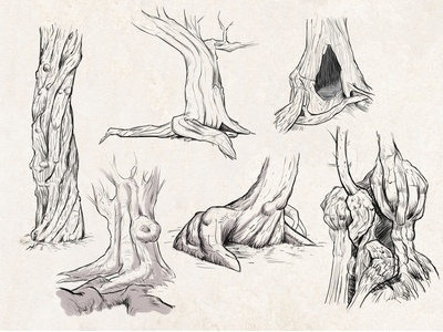 Sketches: Trees #1