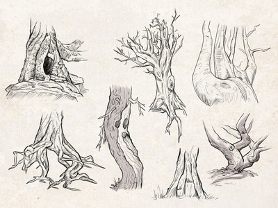 Sketches: Trees 2