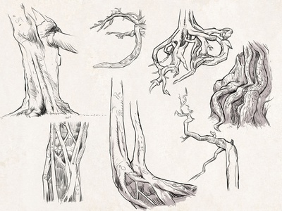 Sketches: Trees 3