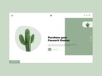 Cactus store web design branding ux ui green web design ui  ux websites cactus