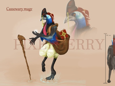 Cassowary mage