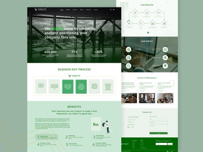 Vitality Accounting & Financial Website design website