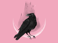 Is it a raven or a crow?