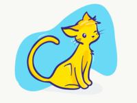Yellow cat 🐱