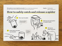 Spider Catcher Postcard