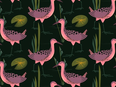 pattern gallineta pattern vector colorful illustration