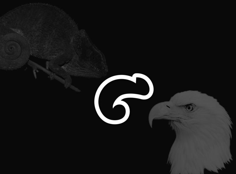 chameleon + eagle logos logo designs animal art animal logo design logo design eagle logo chameleon logo