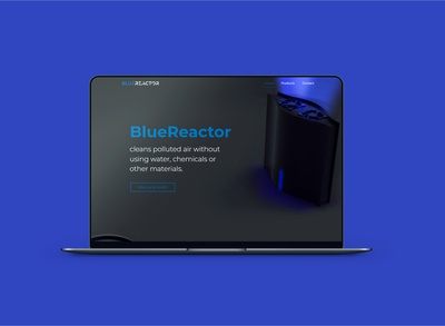 BlueReactors