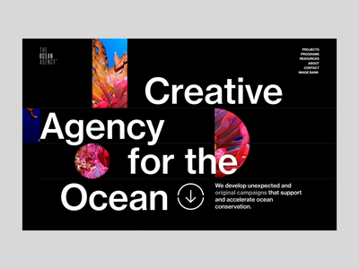 Ocean agency - home page load and scroll design blue interface typography creative web design loading screen interactive motion ui website web animation scroll loading