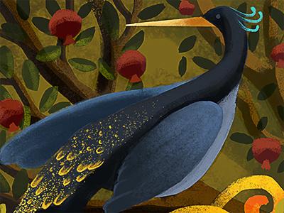 Bird india pommegrenade painting bird children book illustration