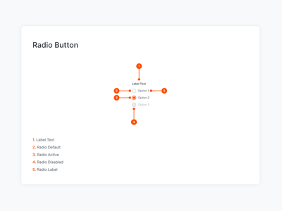 Modaltrans UI Kit / Radio Button design system radiobutton styleguide pattern ui elements ui form form elements form field