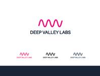 Deep Valley Labs Logo Concepts