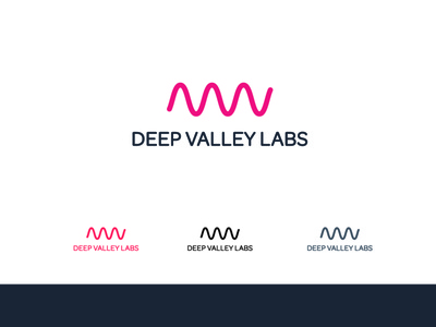 Deep Valley Labs Logo Concepts concepts startup color schemes design logo branding and identity branding
