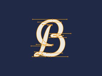 B typography type beziercurves bezier handles script lettering