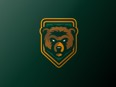 Bruins sports bruins logo