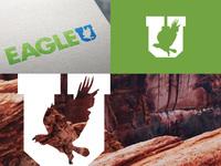 Eagleu dribbble 05