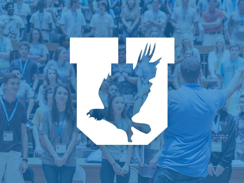 Eagle University - Youth Success Program bird green blue branding identity logo seminar program youth school university eagle