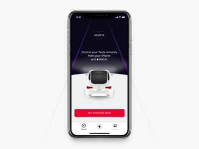 Tesla x Remote Control