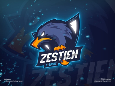 E-Sport Logo Design adobe illustrator illustrator eagle mascot mascotlogo hawk logodesign logodesigner esportlogodesign esports logos esportslogo logos esport logo design logo