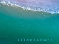 FL Pro Banner