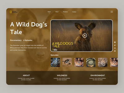 Wild Dog Tale Web ui design