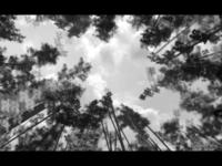 Movie still From Kayak 3/5