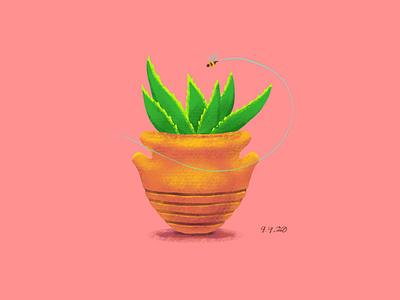 Succulents bee ipad procreate plants design illustration succulent