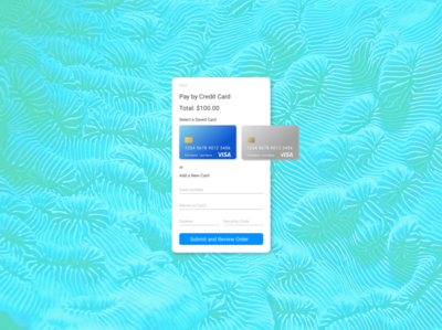 dailyui 002 Credit Card Payment