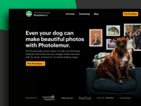 Photo Editor Website Design