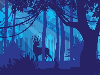 Landscape Rainforest