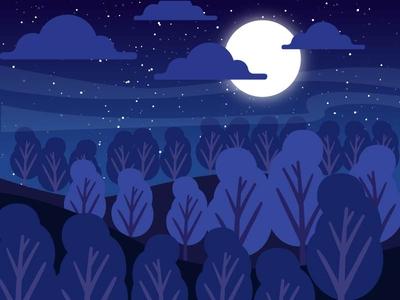 Landscape Rainforest @night