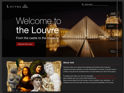 Museum of Louvre - Redesign
