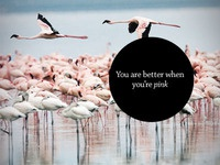 You are better when you're pink