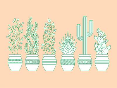 Geometric Plants, Succulents + Cacti oh my! icon minimalist cacti vine plant succulent cactus letterpress pattern geometric linework illustration illust
